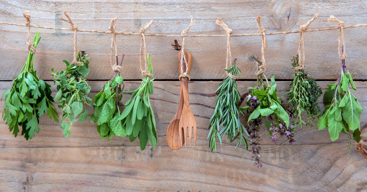 Herbs to Boost Senior Immune Systems During Winter